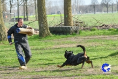 NGB-Midden-Brabant-Regiowedstrijd-5-6-334-van-336
