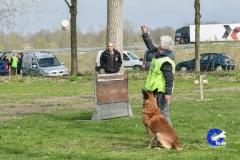 NGB-Midden-Brabant-Regiowedstrijd-5-6-60-van-336