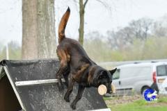 NGB-Midden-Brabant-Regiowedstrijd-5-6-82-van-336
