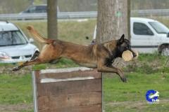 NGB-Midden-Brabant-Regiowedstrijd-5-6-92-van-336