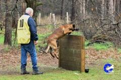Kamp. Ph1 Lieshout 2019 (100 van 216)