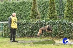 Kamp. Ph1 Lieshout 2019 (71 van 216)