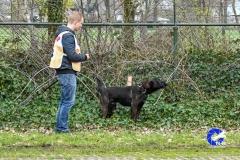 3e-Praktijdwedstrijd-Loosbroek-2019-77-van-233